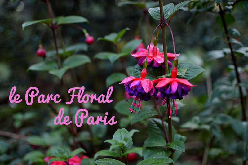 parc-floral-paris-1